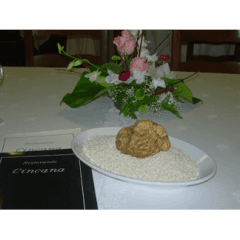 Cucina a base di tartufo