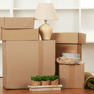 domestic items for removal