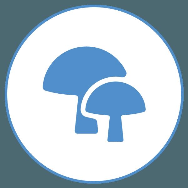 icona funghi
