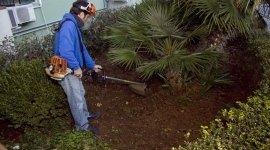 Servizi manutenzione aree verdi