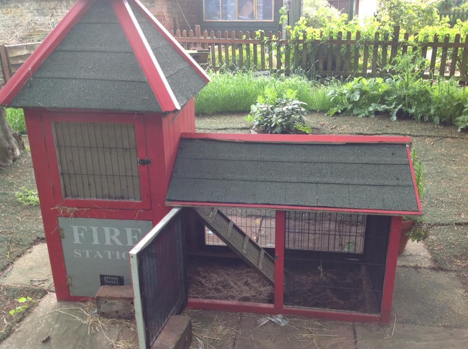 Hedgehog care station