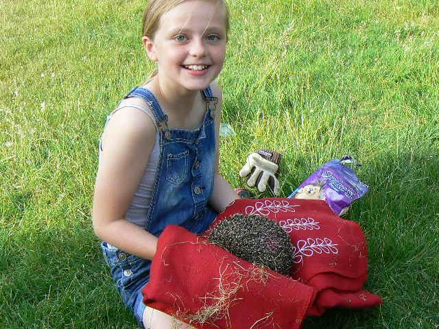 Child with a hedgehog
