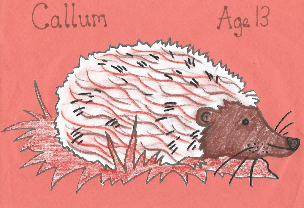 Child'd drawing of a hedgehog