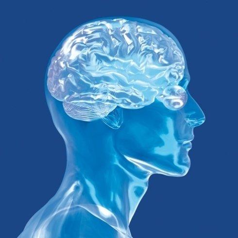 Specialisti in neuropsichiatria