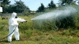 Un operaio durante disinfestazione di un giardino