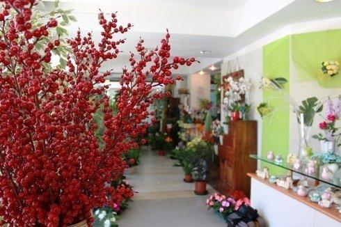 esposizione di fiori