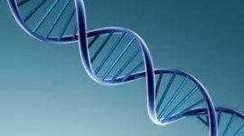 analisi genetiche del metabolismo
