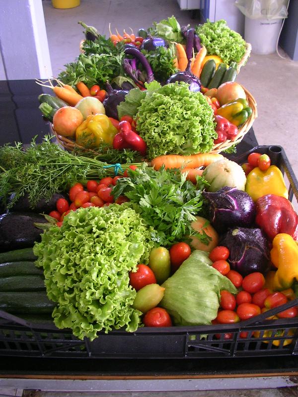 Verdura dell'orto a Tenuta Civrana, Pegolotte di Cona