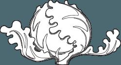 icona verza