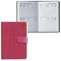un'agenda rosa e un'agenda aperta