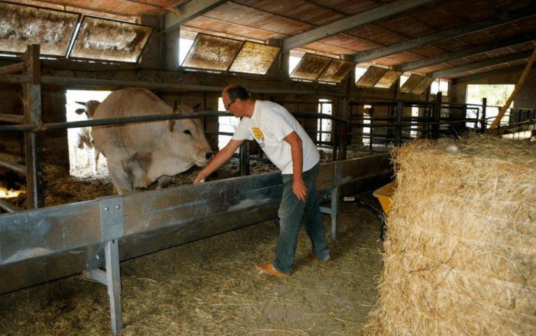 fattoria, salumeria, macelleria,  Agriturismo le Fontanelle, Contigliano, Valle Santa, Rieti