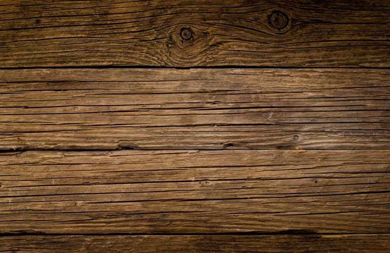 Dynamite Pest Control wood