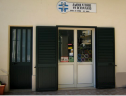 studio medico veterinario