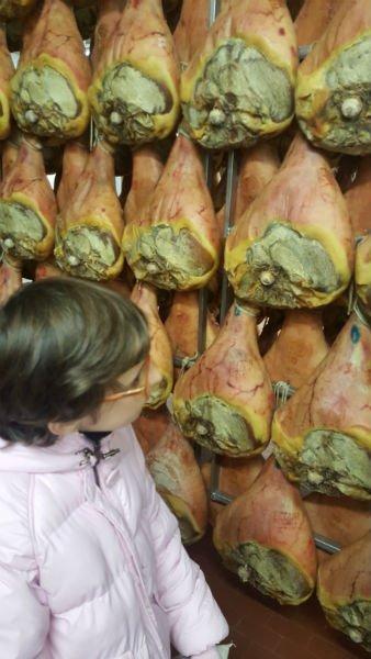 una bambina che guarda dei prosciutti appesi