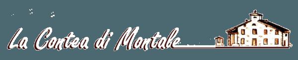 Logo La contea di Montale
