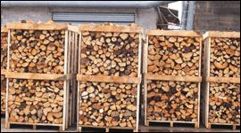 vendita legna fuoco