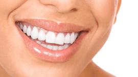 odontotecnica