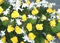 I nostri fiori Onoranze Funebri Parini
