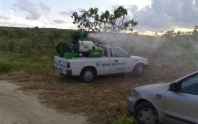 Disinfestazione e manutenzione del verde