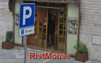 Fioriera derattizzante RistMouse