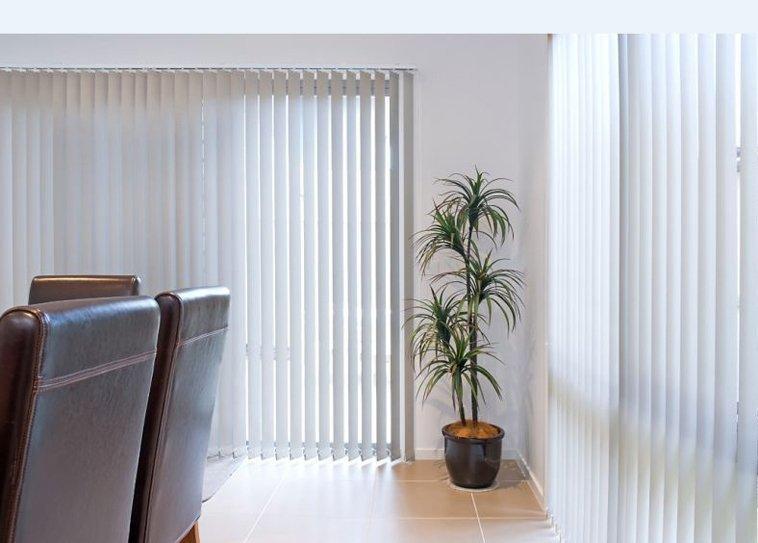 White Curtain Plant