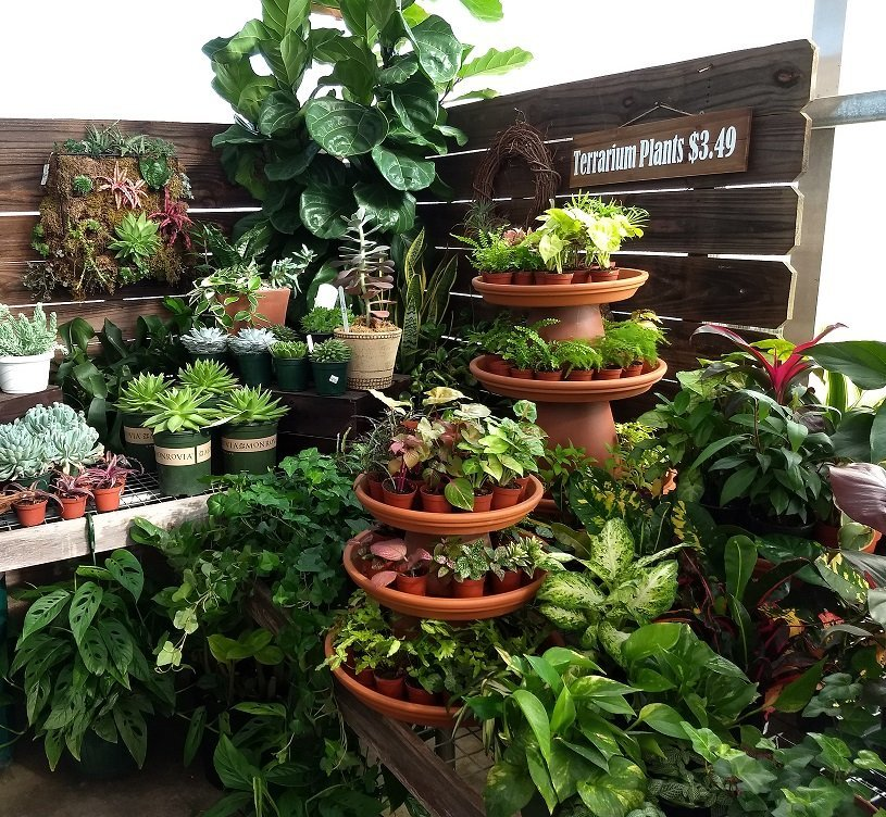 Price Nursery Landscaping Serving High Point And The Triad Area