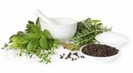 erbe aromatiche, erbe medicinali, erbe sfuse