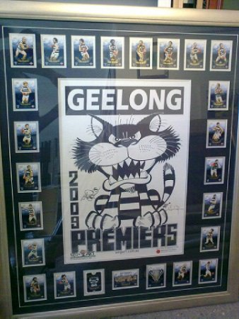 highton frameworks geelong premiers