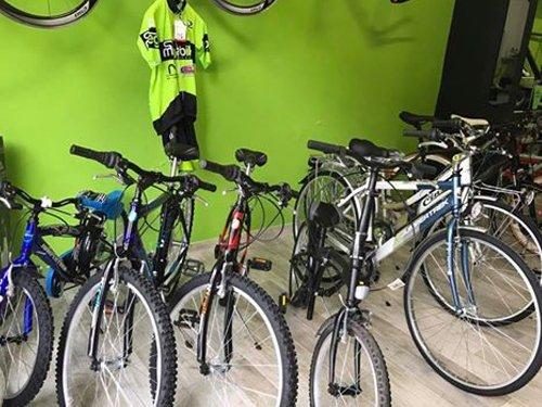 assortimento biciclette