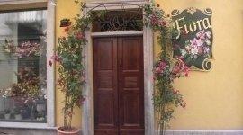 vendita fiori, fiori freschi, fiori colorati