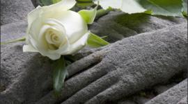 vestizione salme, lapidi, pubblicazione necrologi
