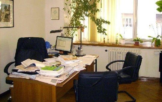 analisi del bilancio, revisione contabile, business plan