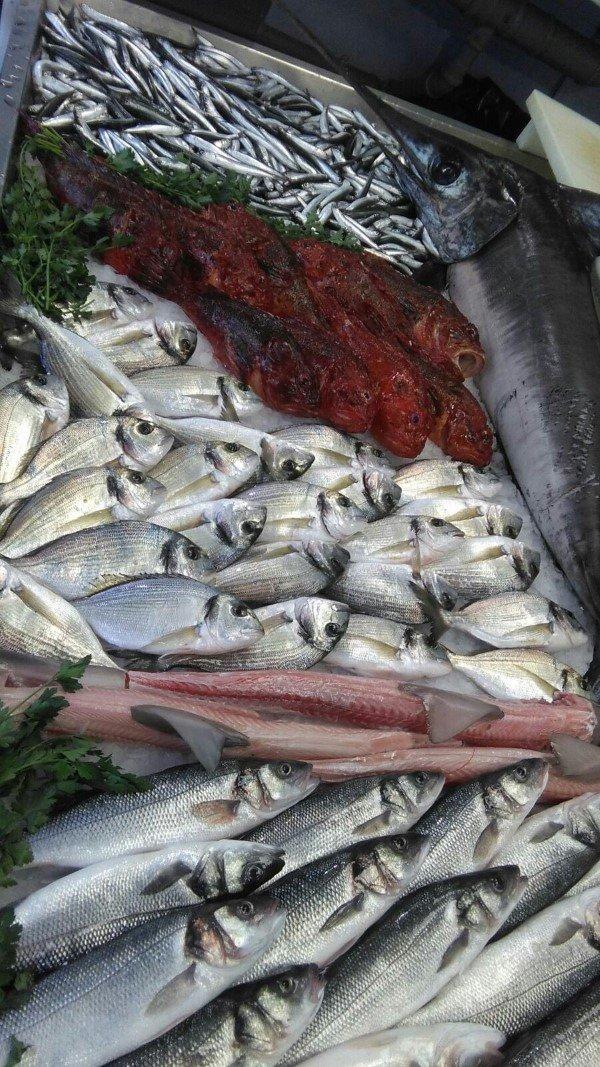 pescato di giornata