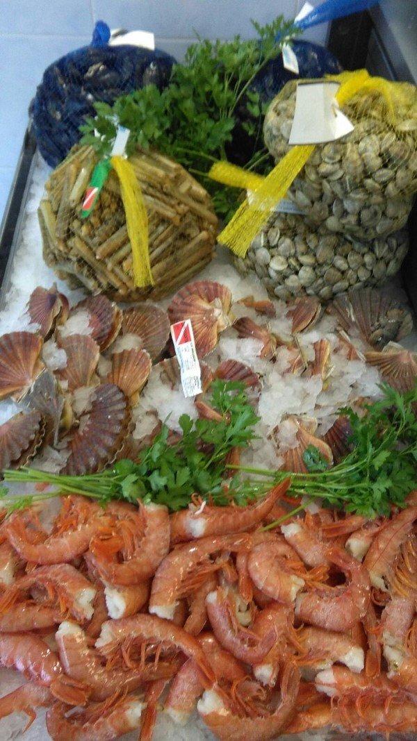 crostacei e molluschi nostrani