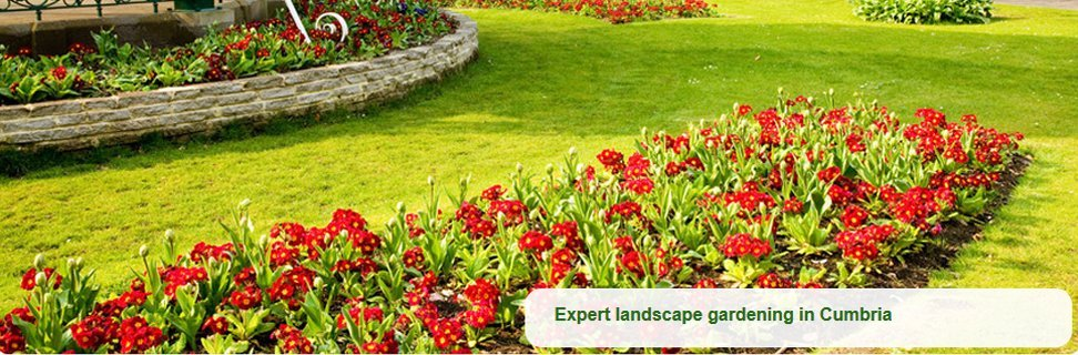 For garden design in Windermere call 01539 443 472