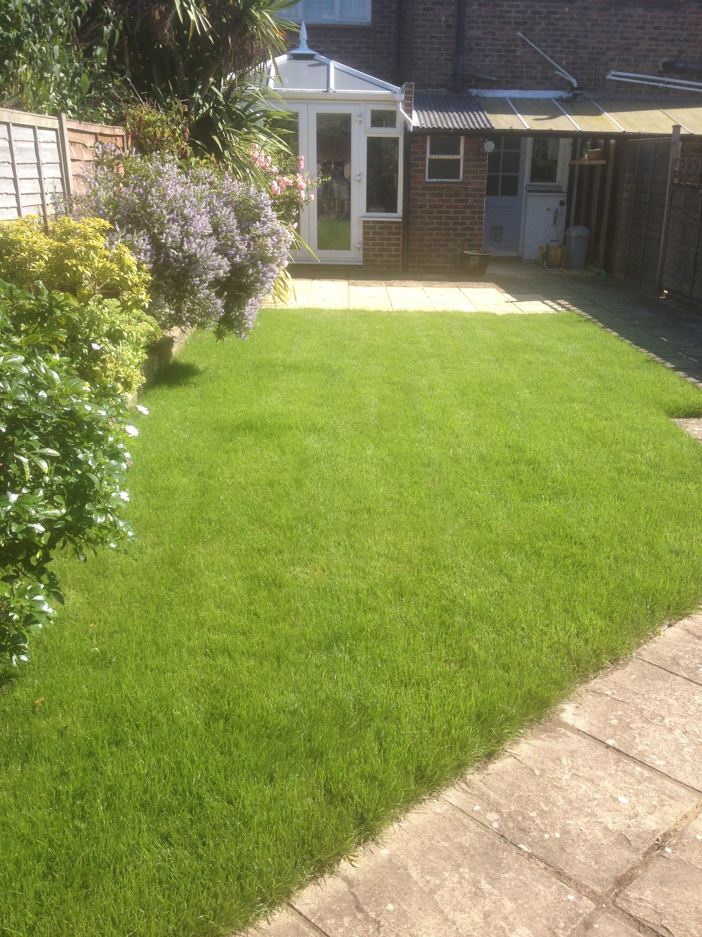 Newly laid garden