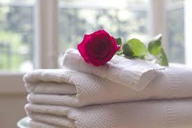 rosa rossa adagiata su una pila di asciugamani bianchi e puliti
