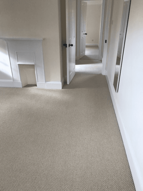carpet floor