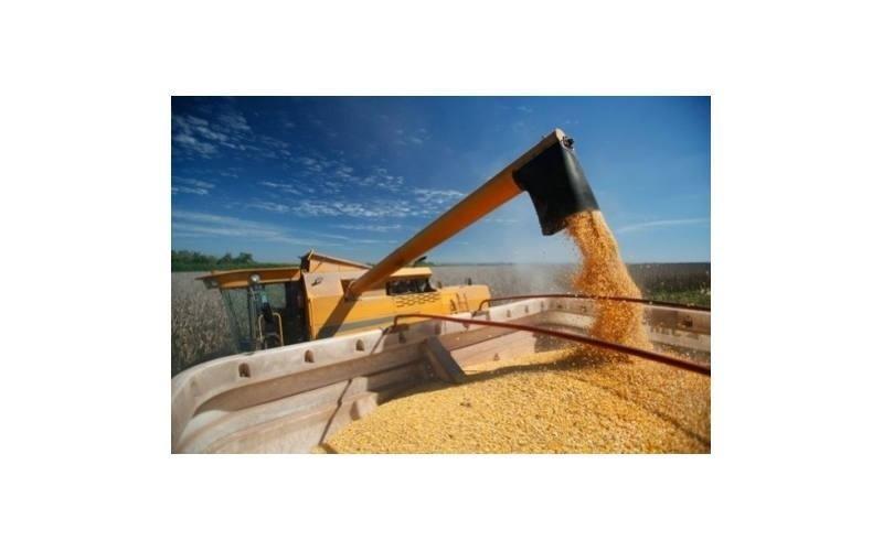 consulenza tecnica settore agricolo Agrimarca srl