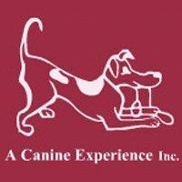 A Canine Experience Inc.
