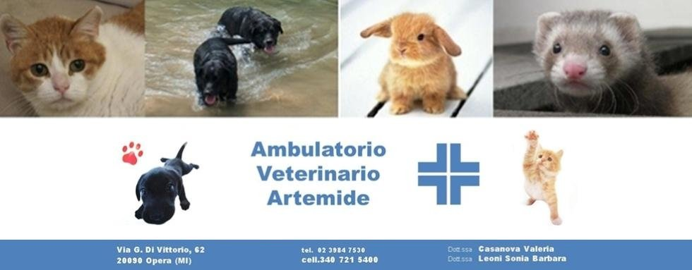 Ambulatorio Veterinario Artemide