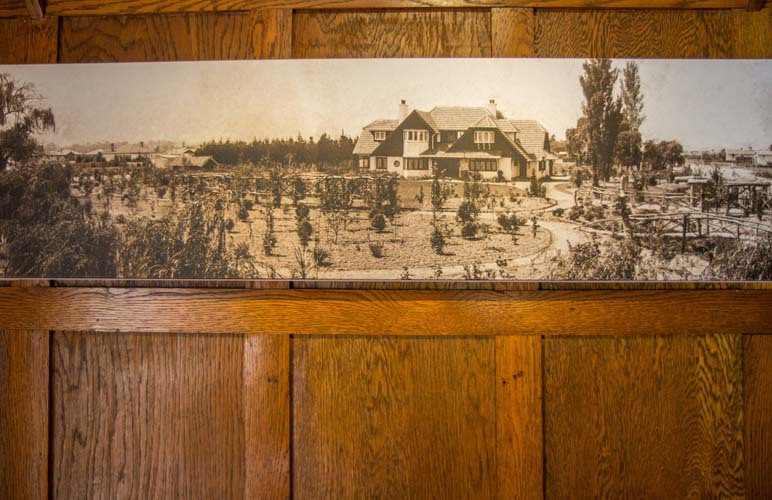 View of the painting on a wooden wall