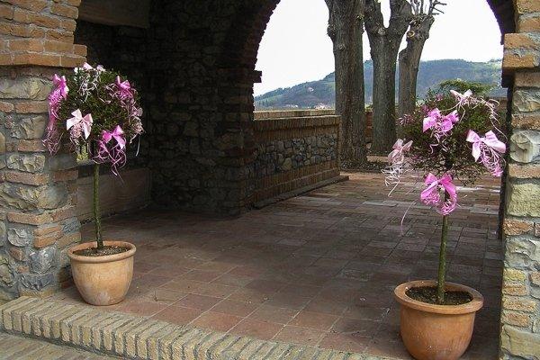 decorazioni piante