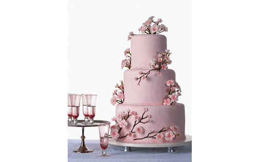 torta con fiori di ciliegio