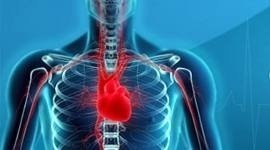 malattie cardiovascolari, infarto, ictus