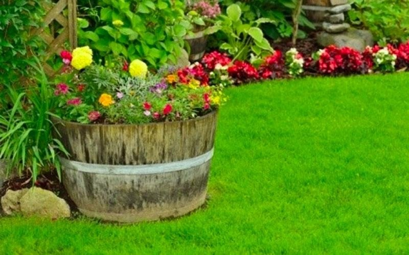 Parchi e giardini