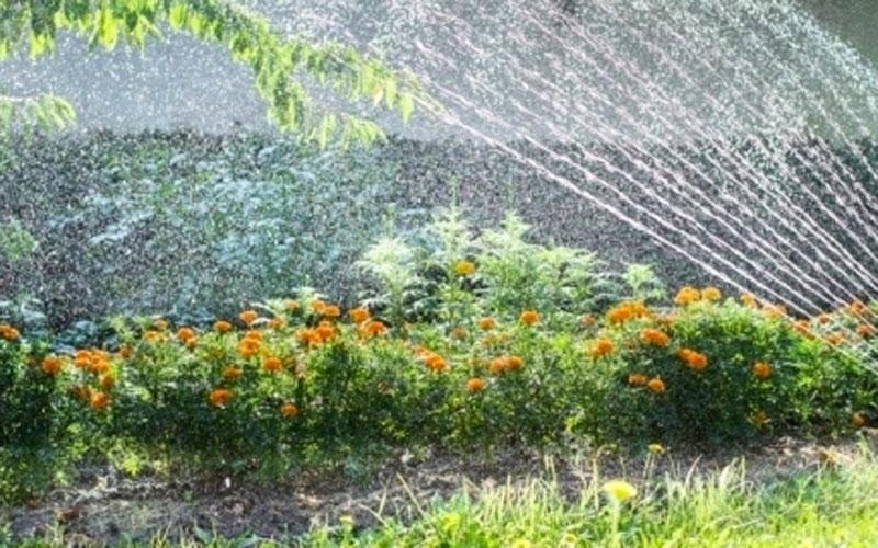 Irrigazione aree verdi