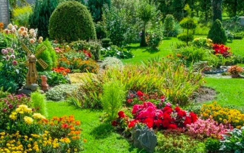 Lavori giardinaggio