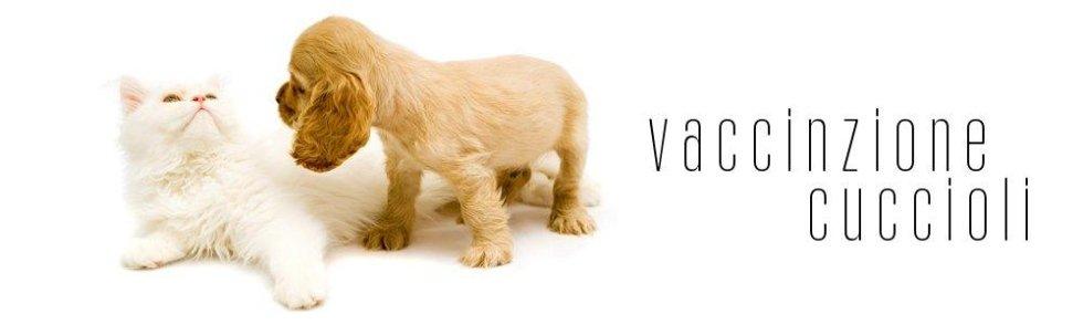Vaccinazioni_veterinarie