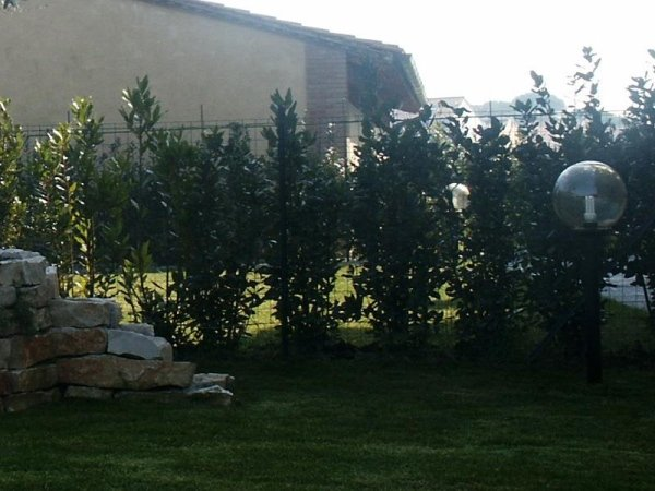Impianti illuminazione giardini